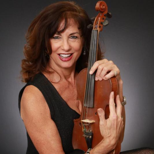 JL acoustic violin